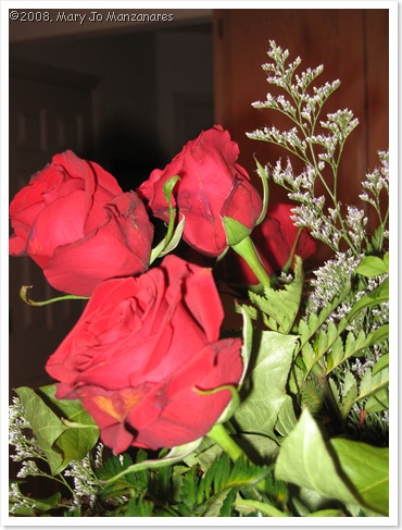 roses-for-valentines-day-thumb