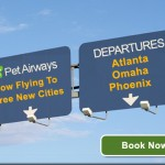 Pet Airways Can Solve Your Pet Travel Problems